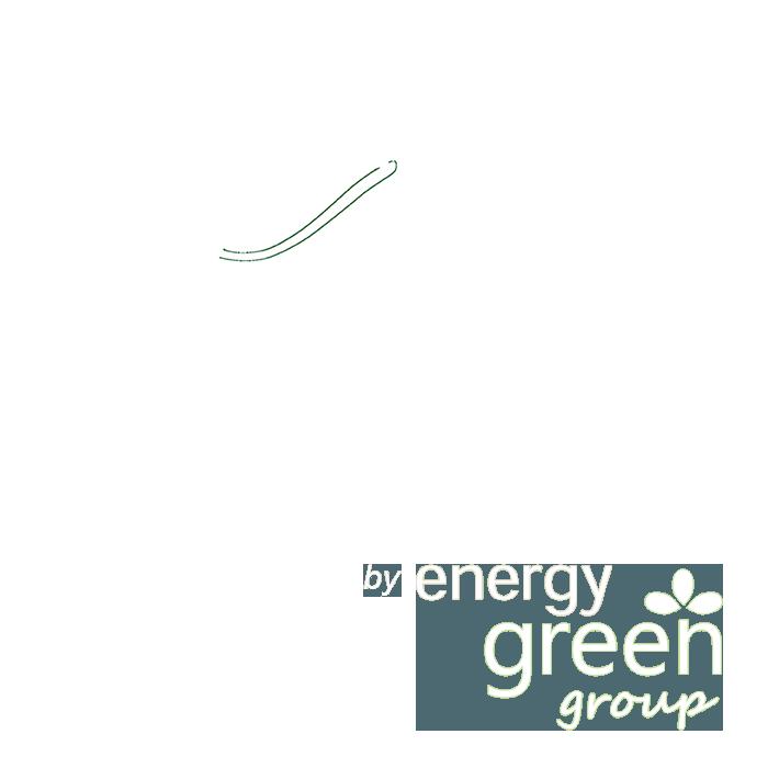 Bicoe